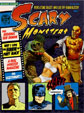 SCARY MONSTERS #97 - Magazine