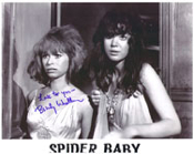 BEVERLY WASHBURN (SPIDER BABY Couple) - 8X10 Autographed Photo