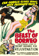 BEAST OF BORNEO, THE (1934) - DVD