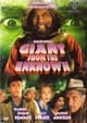 GIANT FROM THE UNKNOWN (1958/Image) - DVD